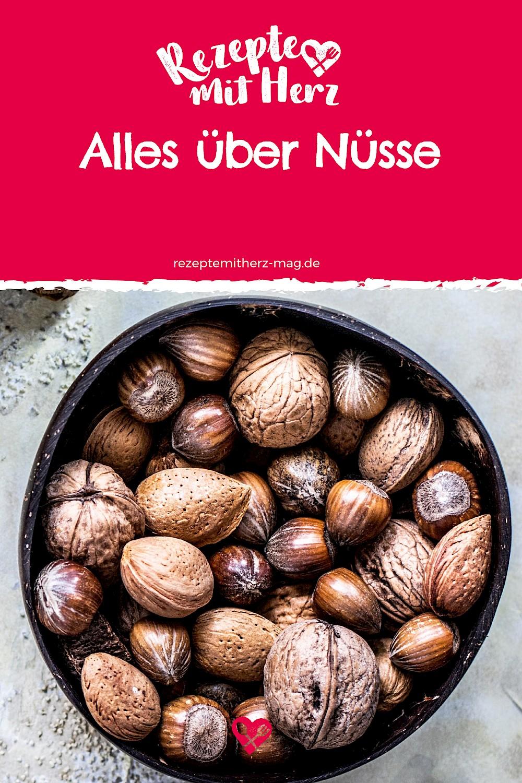 Alles über Nüsse - Walnuss, Mandel und Co.